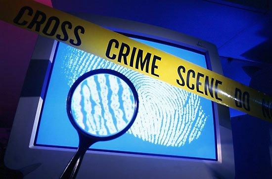 Crime terrorism essay